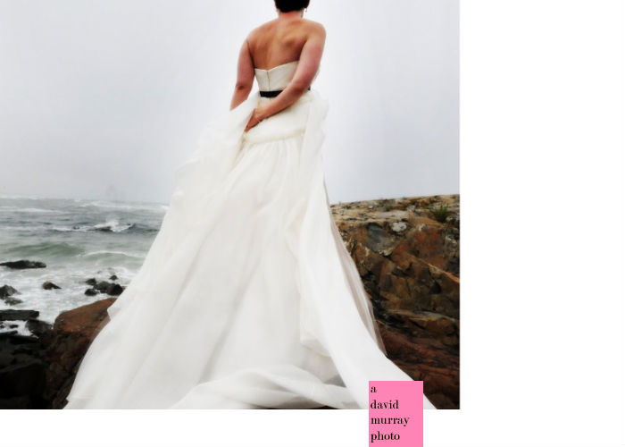 Vera Wang her name is synonymous with weddings There is no other designer